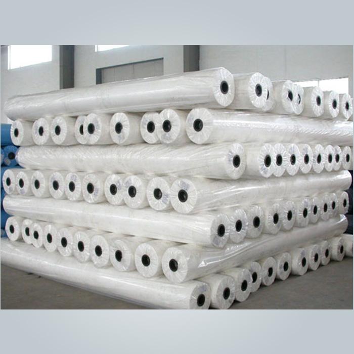 rayson nonwoven,ruixin,enviro-hydrpphilic polypropylene non woven fabric,spun bonded non woven,pp no
