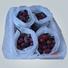 rayson nonwoven,ruixin,enviro protection flower garden fabric 17 resistant