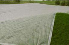 rayson nonwoven,ruixin,enviro-Breathable Agricutural Nonwoven PP Fabric-2