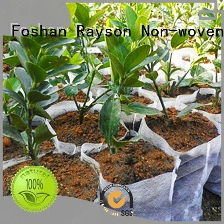 rayson nonwoven,ruixin,enviro Brand moq by pattern weed control landscape fabric