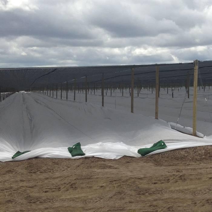 Winter fleece plant cover nonwoven fabric