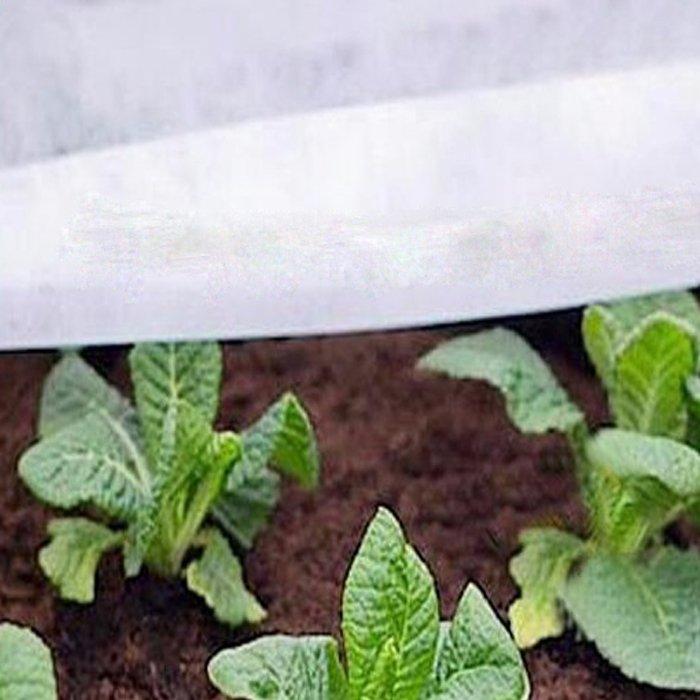 Weiße Farbe PP Vliesstoff zur Reduzierung von Schädlingen und Krankheiten der Pflanze
