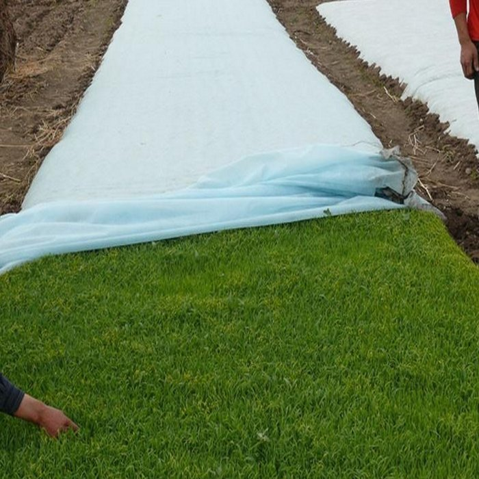 Anti-UV haute densité Agriculture Spunbond non tissé géotextile du paysage