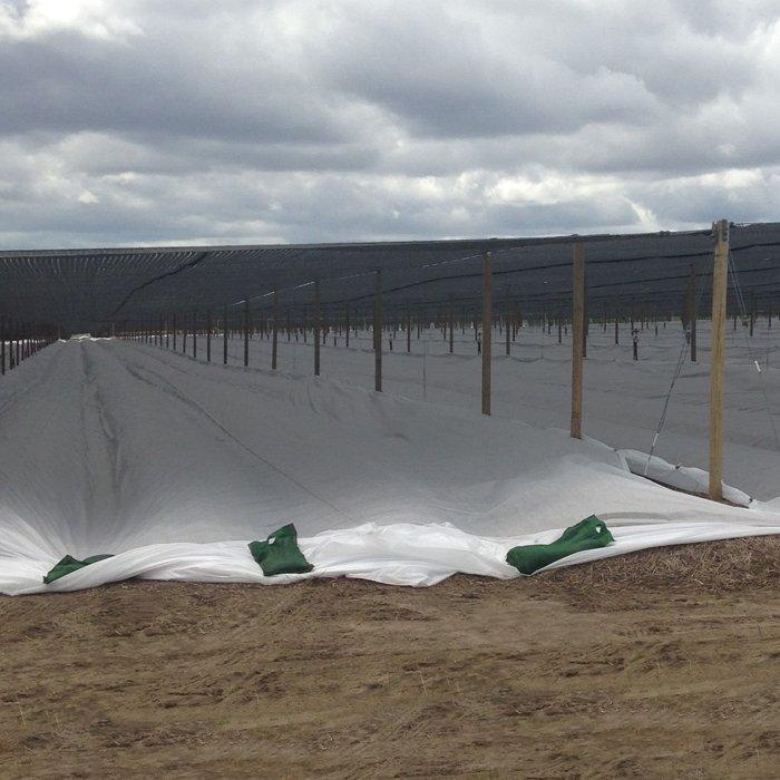 45m Extra breite Breite Spunbond Vliesstoff für Revegetation und bäuerlichen Forstwirtschaft