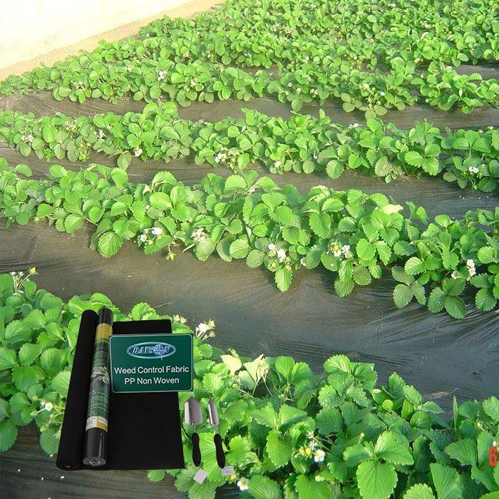 Horticulture non tissé tissu de paysage de barrière d'herbe