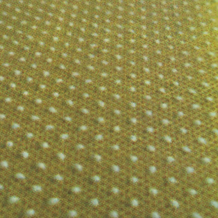 Skid-proof Non Woven PP fabric