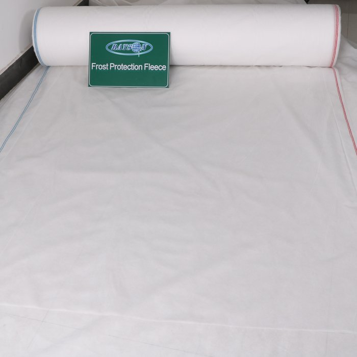 Weight 17gsm Banana Cover Bags Use White Color PP Nonwoven Anti Aging Fabric