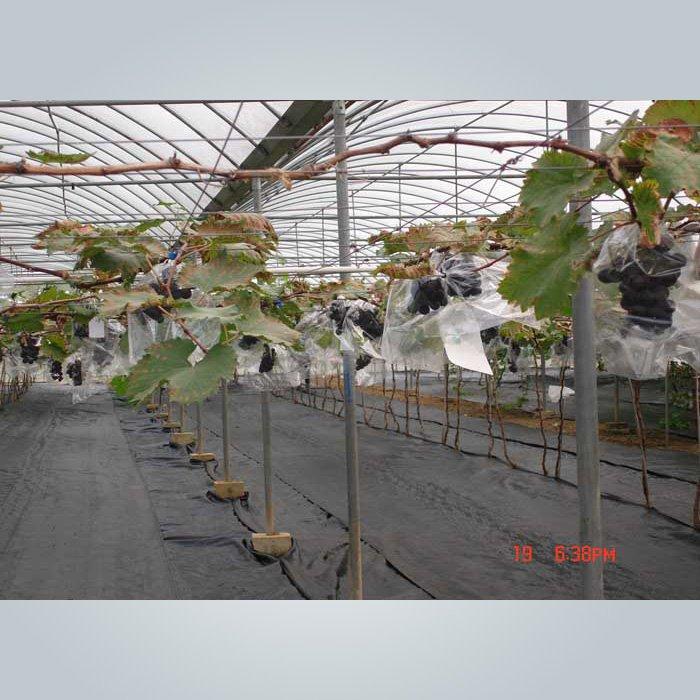 Tissu de contrôle des mauvaises herbes non recyclé anti UV recyclé