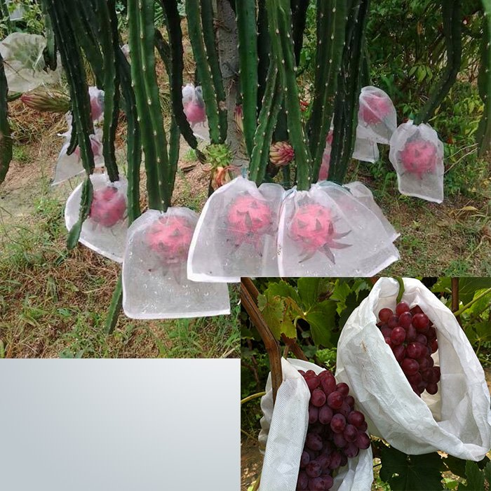 PP nonwoven fabric growing bags