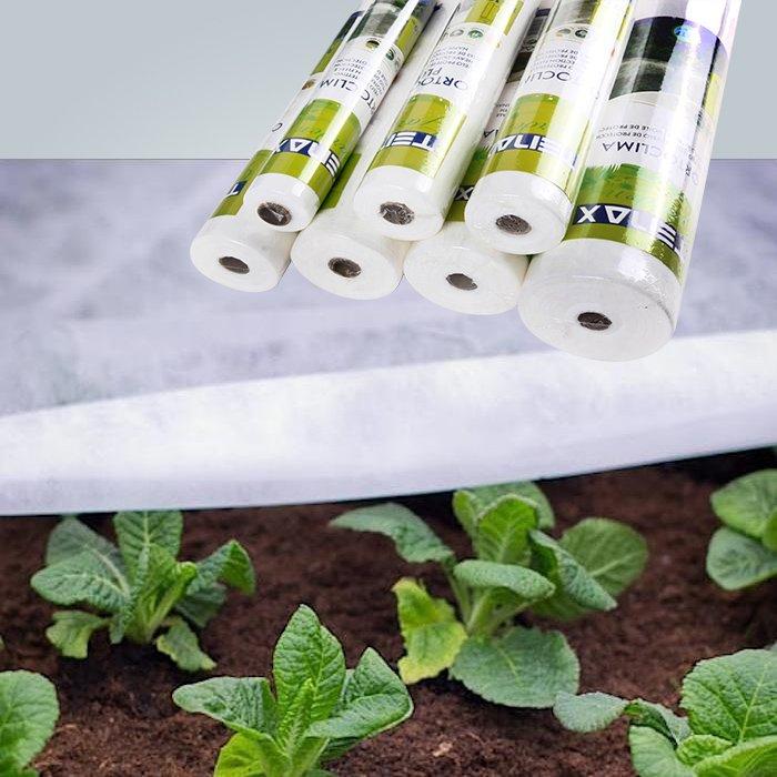 白い庭のフリース霜防止