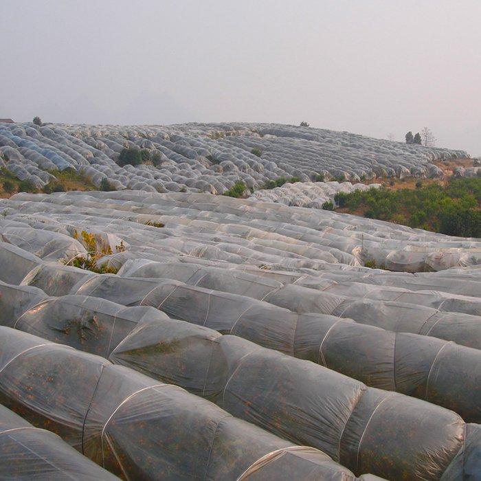 不織布作物保護カバー