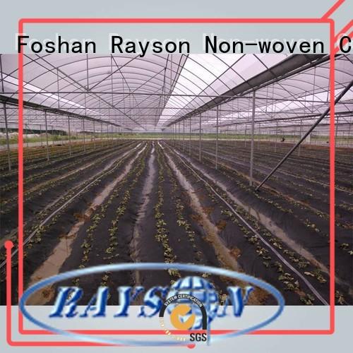 Custom water antiuv 30 year landscape fabric rayson nonwoven,ruixin,enviro ground