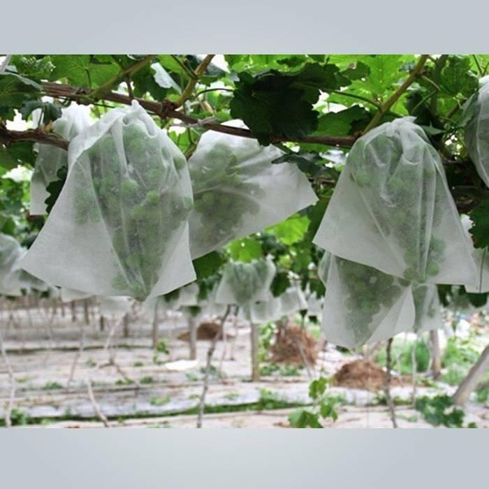 White Color  Permeable Non Woven Friut Cover For Grape / Banana Protection