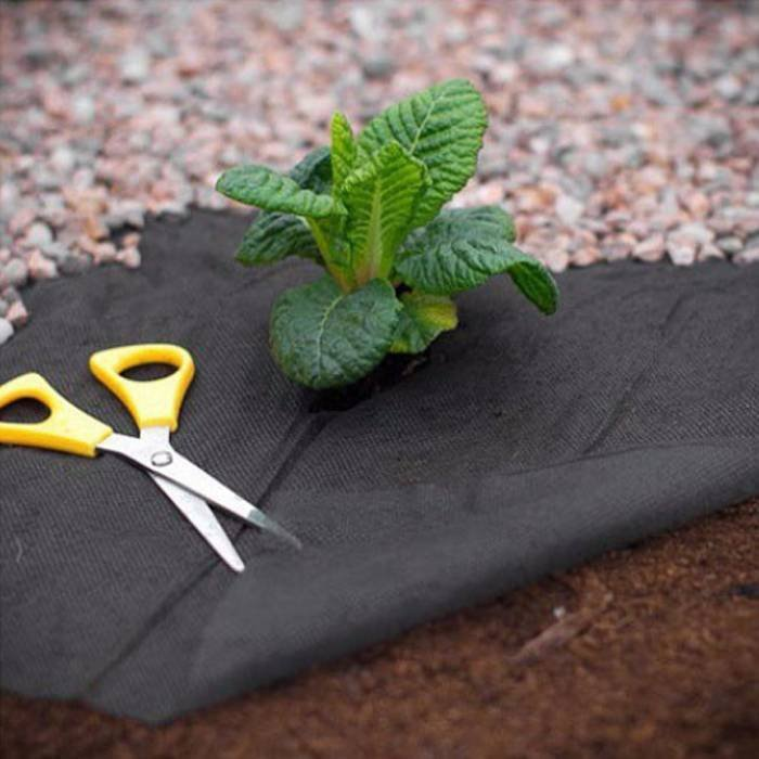 Black Garden Weed Control Fabric For MaintainTemperature To Benefit Healthy Growth