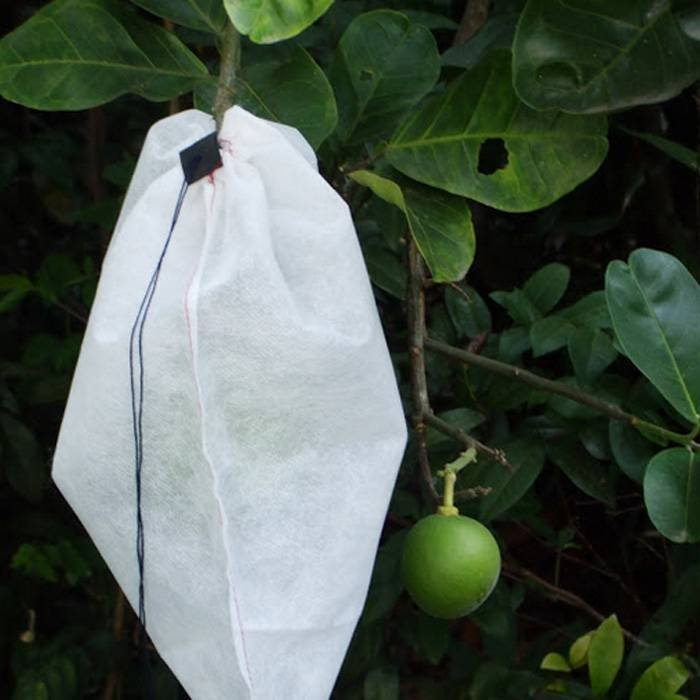 OEM Disposable Nonwoven Fruit Protection Bag For Agriculture