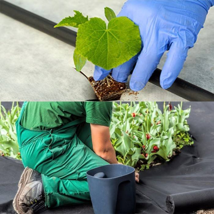 Weed Block Non Woven PP Fabric with UV Resistant Treatment