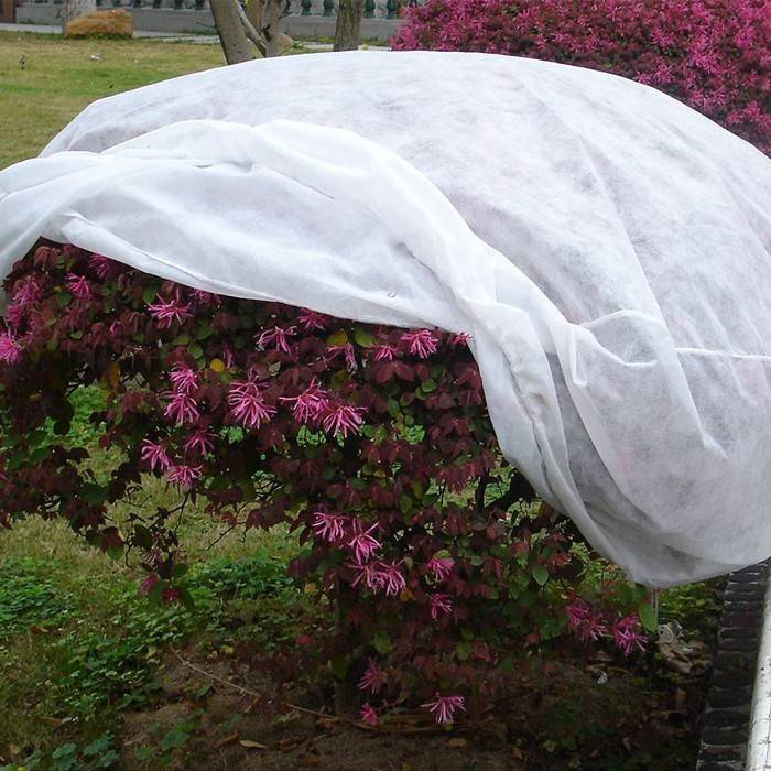 Non woven plant coverings