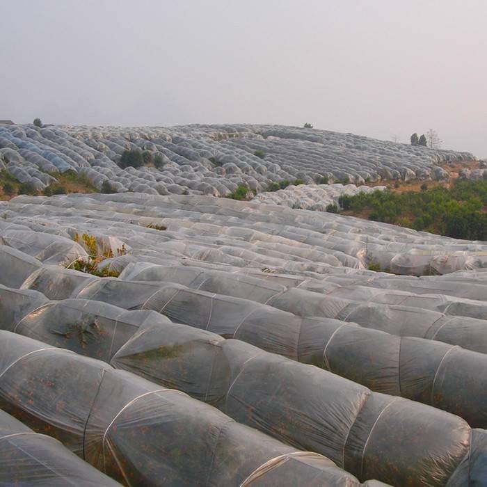 Dostarczyć UV3% rolnictwa 100% włókniny polipropylenowej dla roślin odpornych na mole i zatoczki