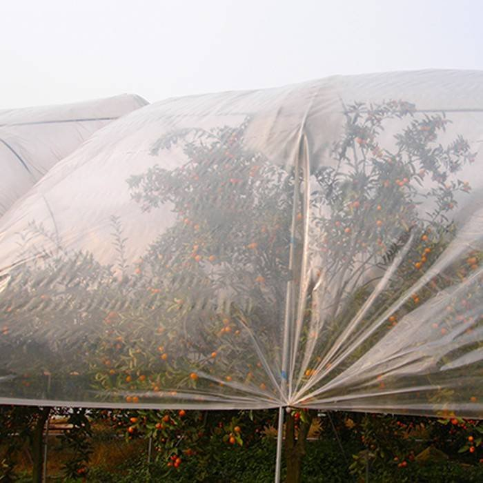 10g~160g 3%UV Biodegradable agriculture nonwoven fabric