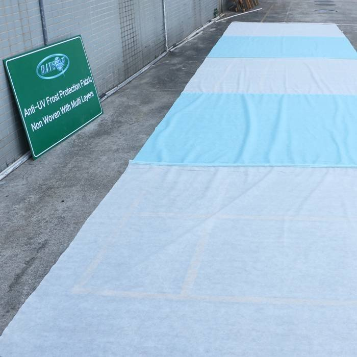 Tissu non tissé superbe d'agriculture de pp de large de 100% pour couvrir