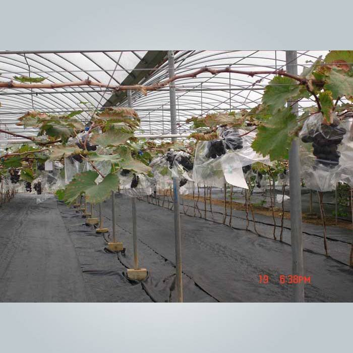 Anti UV recycled pp non woven weed control fabric