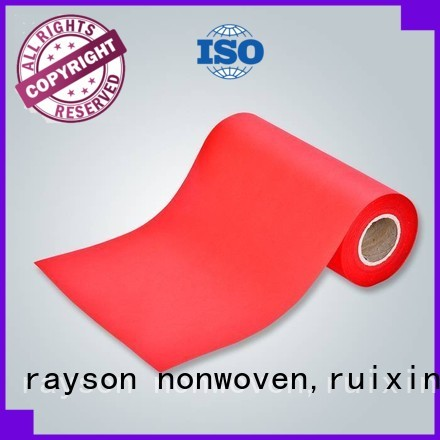 レーヨン不織布、ruixin、enviroブランド100ppの小さなカスタム不織布企業