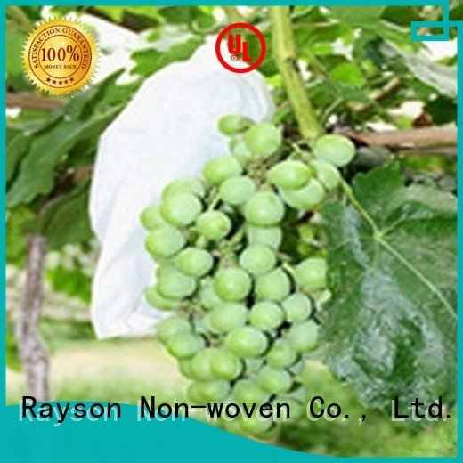 rayson nonwoven,ruixin,enviro Brand friut finished plain flower garden fabric ground