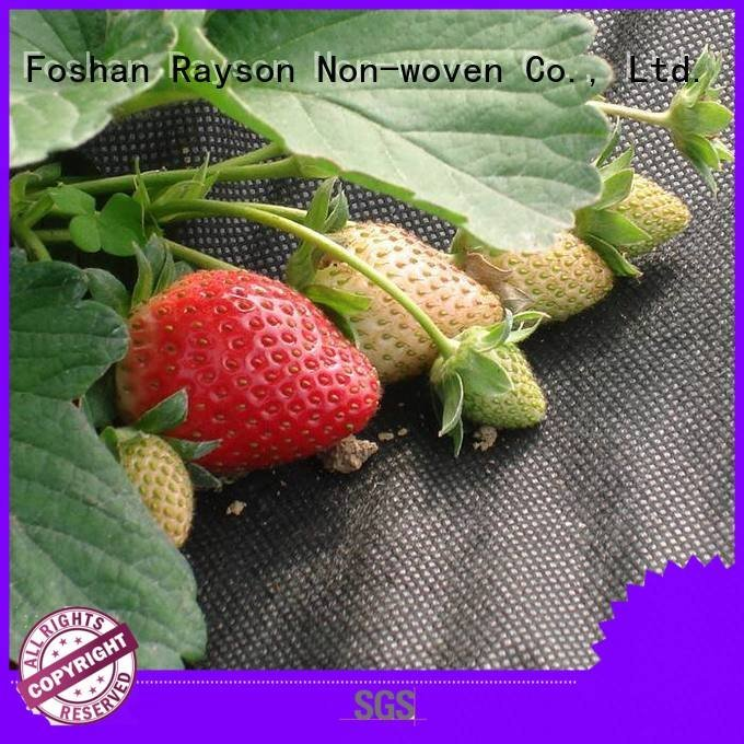 rayson nonwoven,ruixin,enviro preen landscape fabric test frost sale horticultral
