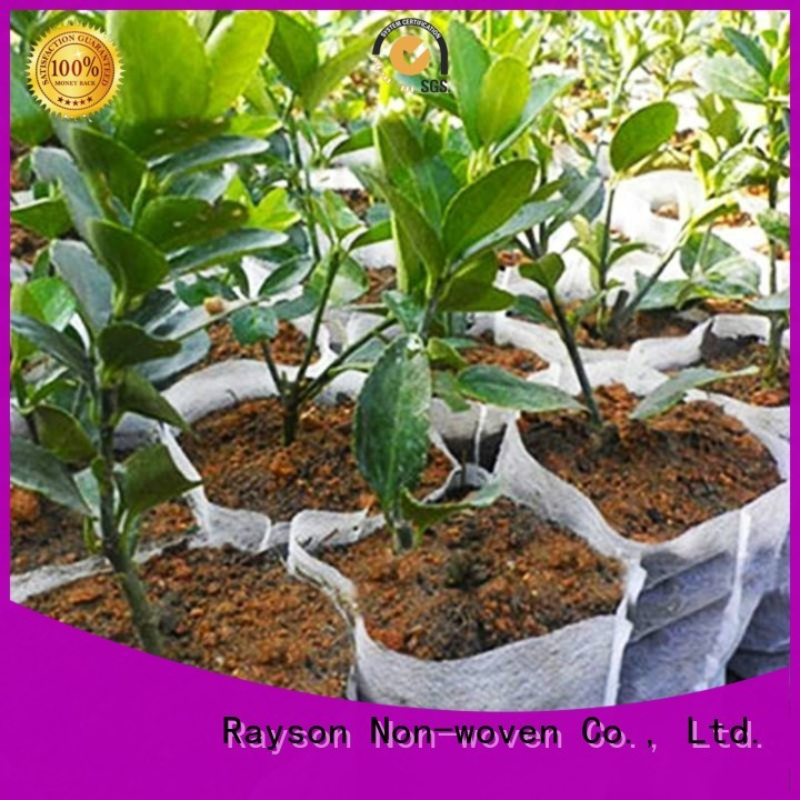Quality rayson nonwoven,ruixin,enviro Brand fabric for weeds fabric sgs