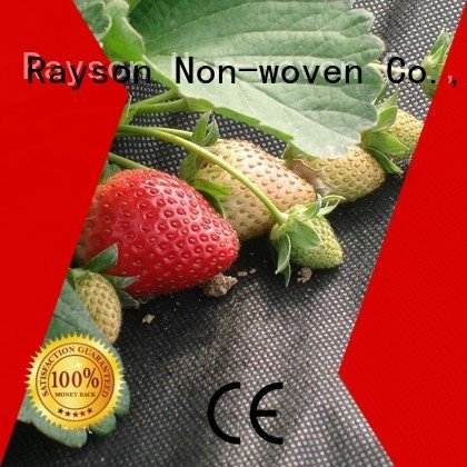 geotextile spunbonded control landscape fabric material rayson nonwoven,ruixin,enviro