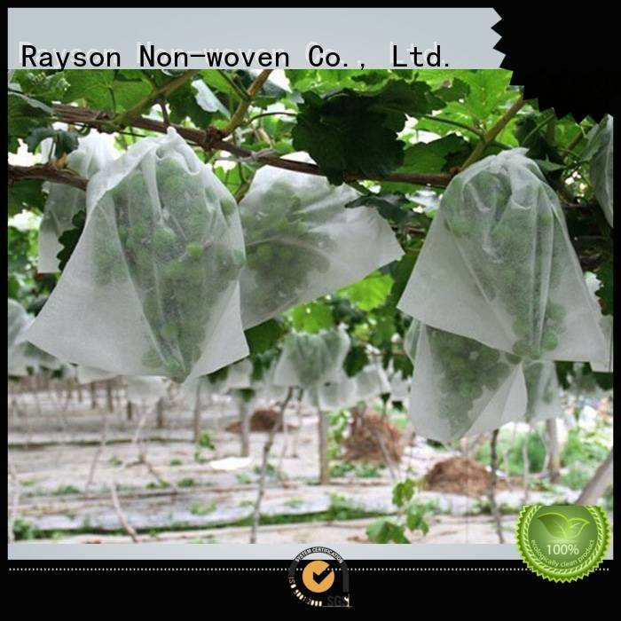 Custom flower garden fabric loss 20gsm cover rayson nonwoven,ruixin,enviro