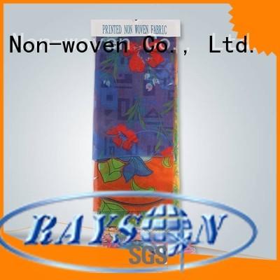 rayson nonwoven,ruixin,enviro Brand fabirc personalized pp non woven fabric manufacturer textile