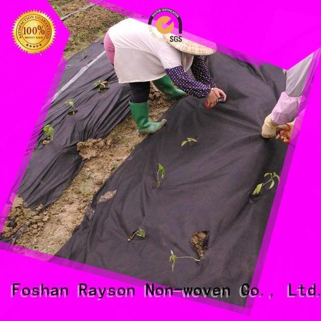rayson nonwoven,ruixin,enviro 30 year landscape fabric starwberry quality rolls green