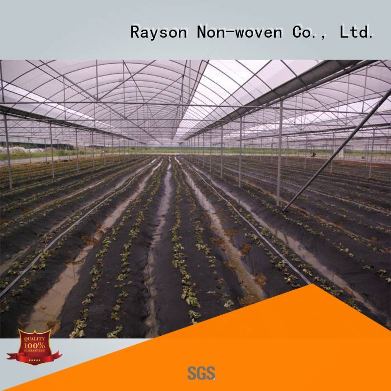 rayson nonwoven,ruixin,enviro Brand 50gr vegetableplant covers 30 year landscape fabric